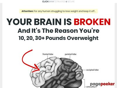 The Algorithm Diet – Weight Loss Program by Kevin McMillian