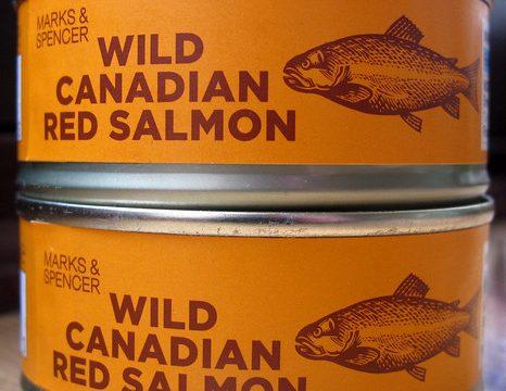 Wild Canadian Salmon:TWO