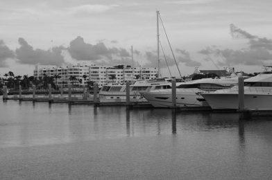 Monochrome, Harbour Landscape, Palm Harbour, West Palm Beach, Florida, United States Of America.