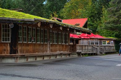 The Old Country Market – Coombs, BC
