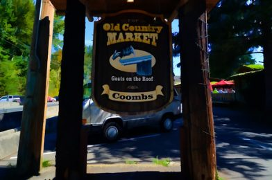 The Old Country Market (Goats on the Roof) – Coombs, BC